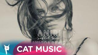 Descarca Aniri - Suflet bun (Amigos Remix)
