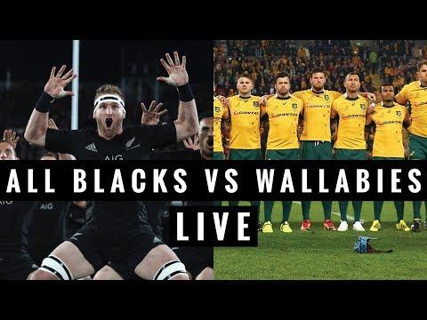 wallabies v all blacks - photo #39
