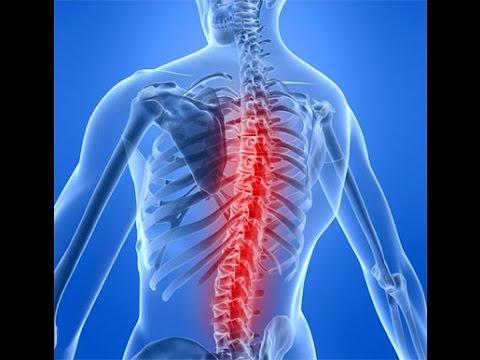 Болит спина вдоль позвоночника
