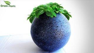 Modern Cement Ball Planter at Home | Best Cement Tree pot Idea | Easy Planter Ideas//GREEN PLANTS