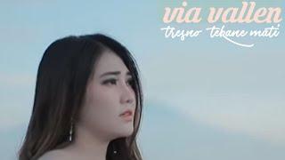 Gambar cover VIA VALLEN - Tresno tekane mati terbaru 2019
