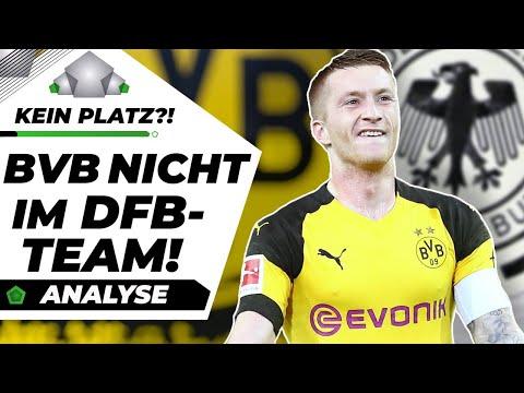 Wieso hat der BVB kaum deutsche Nationalspieler?!  Analyse