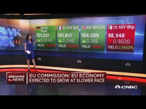 Expect the European economy to grow at slower pace: EU Commission