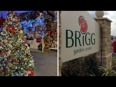 Christmas In November Brigg Garden Center Youtube