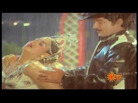 Sobhan Babu Radha Hottest Navel Song HD