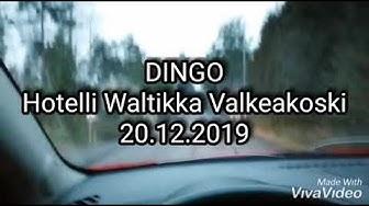 Dingo Valkeakoski Hotellli Waltikka
