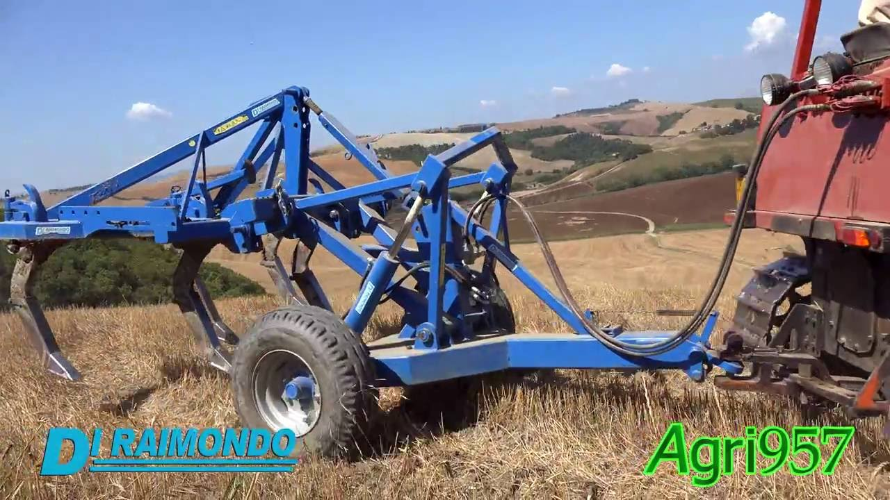 Ripuntatori raptor 5 con carrello idraulico di raimondo for Di raimondo macchine agricole