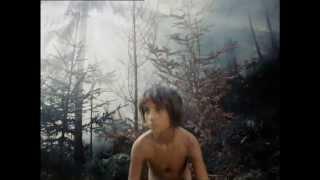 Тени забытых предков (Feuerpferde - Schatten vergessener Ahnen) (Teni zabytykh predkov) (Trailer)