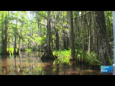 Louisiana Swamp Tour With Cajun Encounters - Episode 258