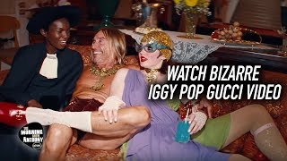 Watch Bizarre Iggy Pop Gucci Video