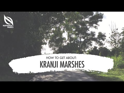 How to get about Kranji Marshes