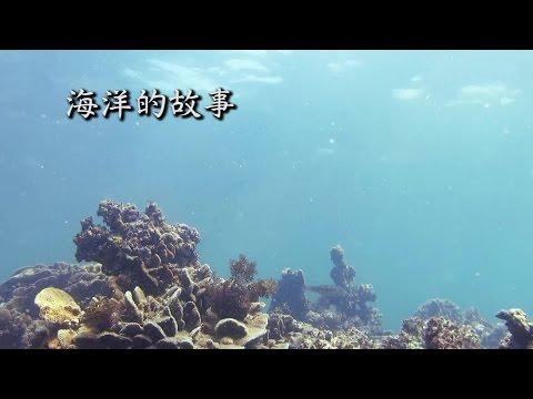 香港生物多樣性系列 - 海洋的故事
