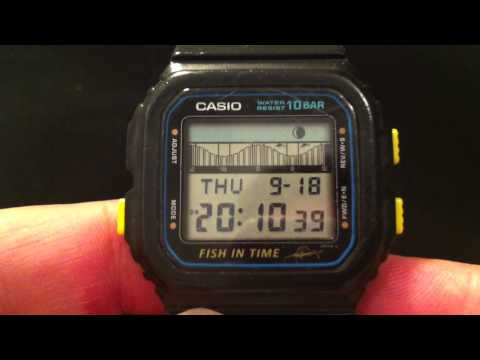 Casio FT-100 Fish In Time