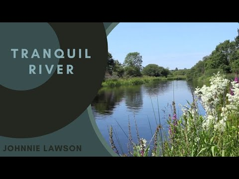 Nature Sounds Relaxation-Birds Singing-Sound of Water-Relaxing Soothing Meditation-Mindfulness