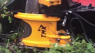 Tree Shear video, Tree Shear clips, nonoclip com