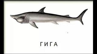 Ловля Гігантської акули і малих полосатиків на Східному Криті.