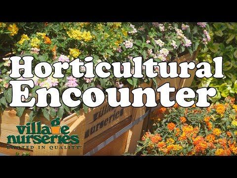 Horticultural Encounter: Presented By Village Nurseries