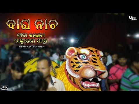 Ganjam Famous Bagha Nacha | Tiger Dance of Tata Colony Thakurani Jatra || Odisha Sanskruti
