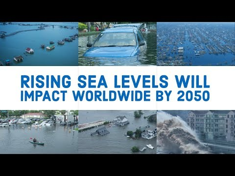 How Many Cities Will Be Impacted By Rising Sea Level
