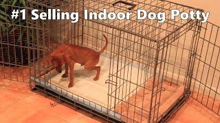 Indoor Dog Potty - #1 Selling Indoor Dog Potty - Indoor Dog House Training - Indoor Housebreaking