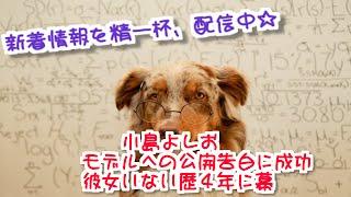 お笑いタレントの小島よしお(34)が17日放送の日本テレビ系「有吉...