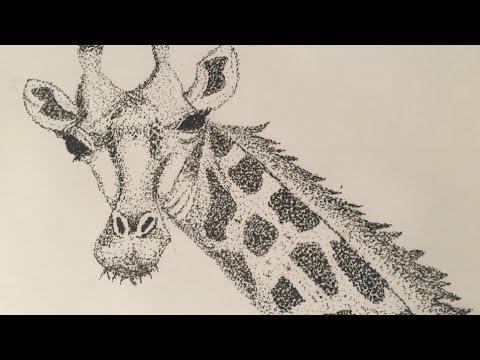 Stippling Giraffe speed drawing (Pointillism) - YouTube