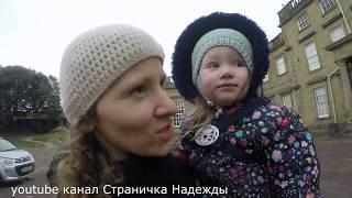 Кормление кур и гуляние с детьми