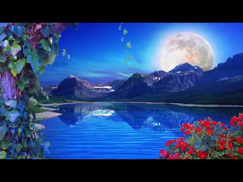 Nature Background Loop || Free Background || HD || 60 fps