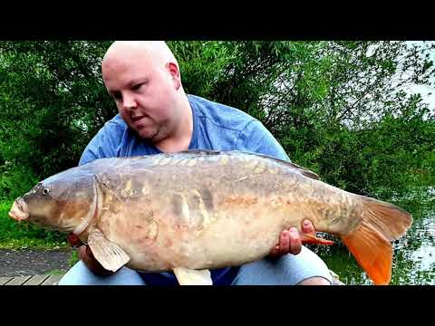 Fishing Adventures With Andrew Taylor - Weston Lawns Fishery