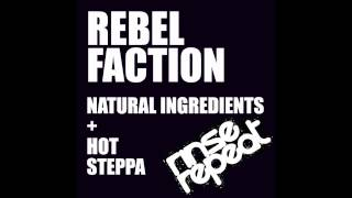 Rebel Faction - Hot Steppa [RINSE002] - Release 13th February 2013 - FUTURE JUNGLE
