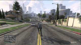 GTA 5 BIKE RIDING DOWN A HILL GOING FASTER THAN A CAR GAMEPLAY (RACE BIKE)