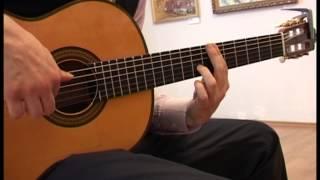 Испанская гитара  Огненный взмах мулеты играет Михаил Спичков