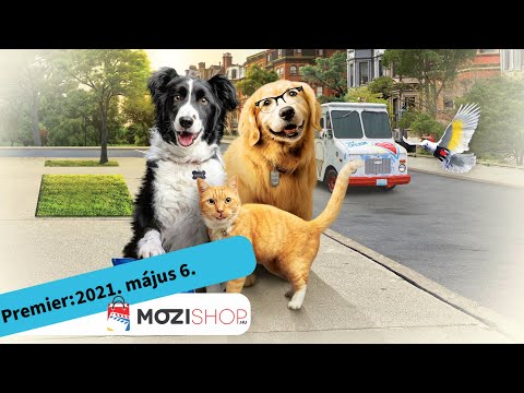 youtube filmek - Kutyák és macskák 3.: A mancs parancs - magyar szinkronos előzetes #1 / Családi vígjáték