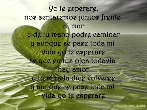 Yo  Te Esperare Lyrics