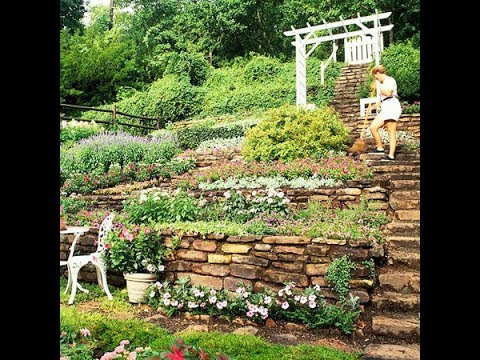 Landscaping Ideas For Hillside You