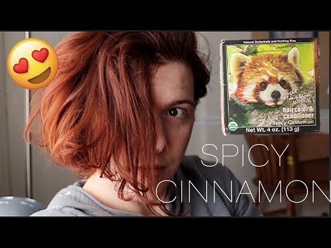 cf629868ee6ac Light Mountain Natural Henna SPICY CINNAMON Final Thoughts - YouTube