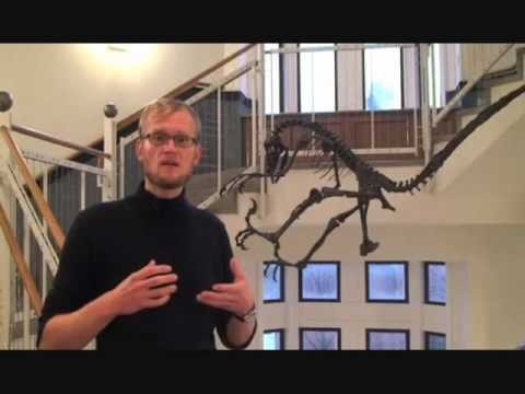 Evidence for Evolution: More Feathered Dinosaurs! (Part 2)