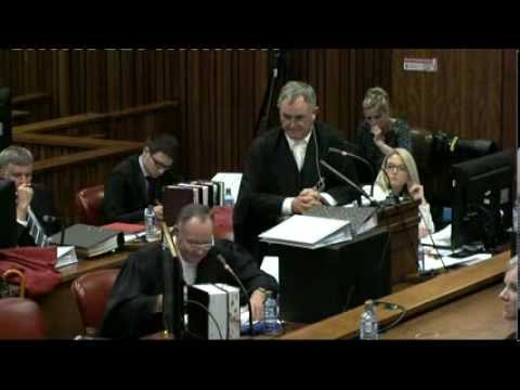 Oscar Pistorius Trial: Friday 7 March 2014, Session 3