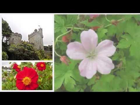 Glenveagh gardens