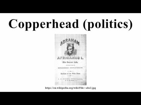 Copperhead (politics)