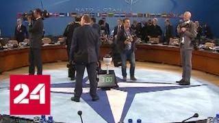 """Двойной пранк: НАТО и Парубий узнали, """"как поднять бабла"""" - Россия 24"""