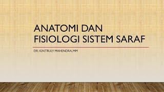 Halo sobat lifestyleOne Kencur merupakan salah satu tanaman obat yang memiliki banyak manfaat. dan s.