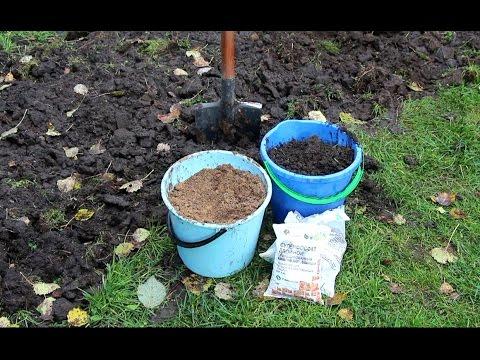 Как удобрить почву осенью