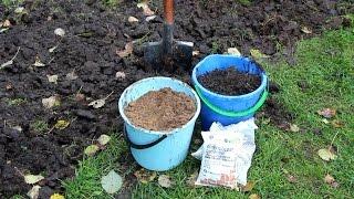 видео Как правильно подготовить участок под посадку картофеля