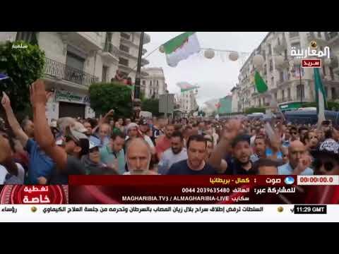 Almagharibia TV: المغاربية قناة فضائية حوارية وإخبارية تعمل على تسليط الضوء على القضايا السياسية ...