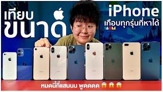 รีวิว iPhone 12 Pro Max Size Comparison เทียบขนาด iPhone ทุกรุ่นที่หาได้!