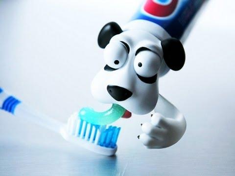 dog-barf-toothpaste----lÜt-#31