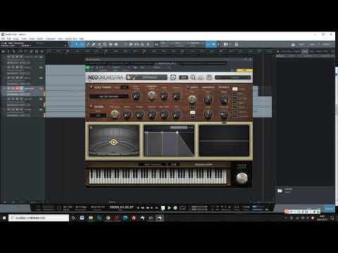 Bass Ray5 Video Demo/Introduction