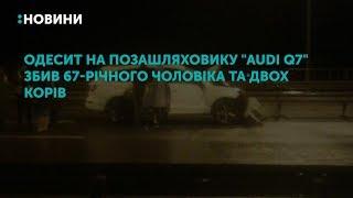 """Одесит на позашляховику """"Audi Q7"""" збив 67-річного чоловіка та двох корів"""