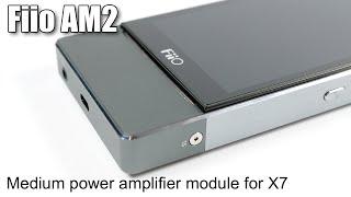 fiio am2 amplifier module review